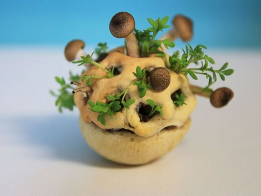 L'en-cas bio imprimé en 3D par la designer hollandaise Chloé Rutzerveld.