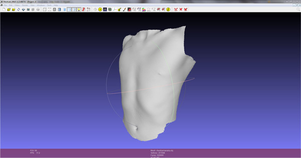 3D scan of a human torso (without texture), seen in Mesh Lab.