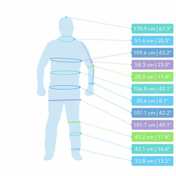 Portal MX Texel - Body scanning