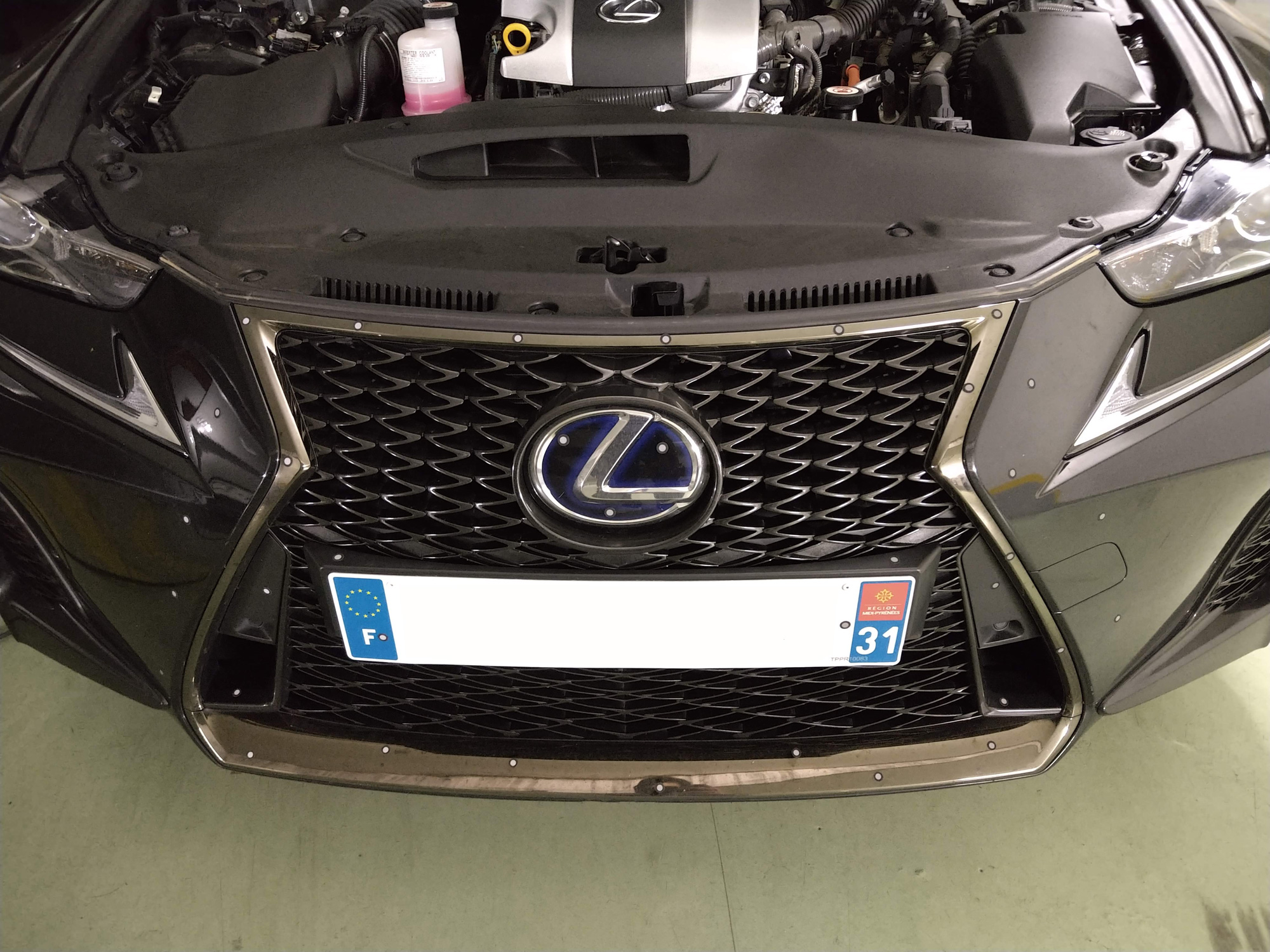 Lexus car grille with markers