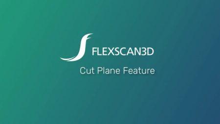 FlexScan3D Polyga - 3D capture